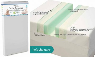 Moonlight Slumber Little Dreamer Crib Mattress