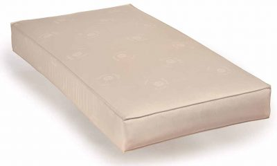 Sealy Soybean Serenity Foam Core Infant Toddler Crib Mattress 1