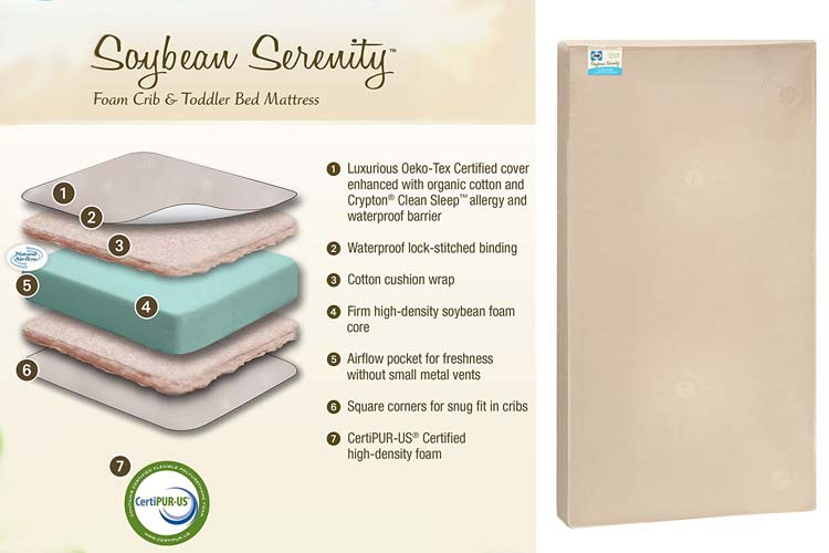 Sealy Soybean Serenity Foam Core Infant Toddler Crib Mattress Review